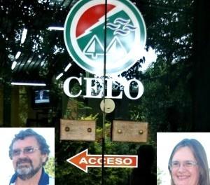 CELO-300x300-300x264