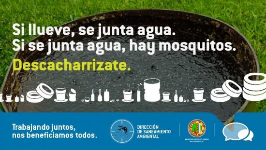 Campaña Dengue Carteles