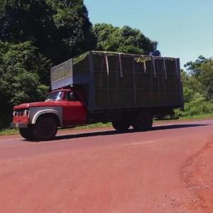 camionconte