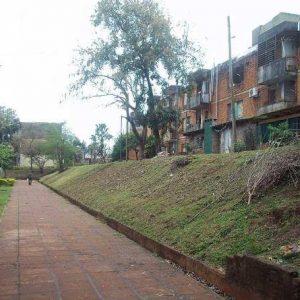 barrioyerbal-10082015