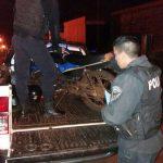 Conducía en estado de ebriedad una motocicleta sin luces, realizaba maniobras peligrosas y fue detenido