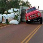 Despistó un camión cargado con yerba mate y no hubo lesionados