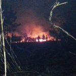 La Policía investiga el incendio en una chacra de Oberá