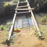 Huyen de rottweilers y cruzan precario puente para ir a clases