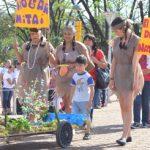 El Desfile de Carrocitas de Nivel Inicial se hará este sábado en Oberá