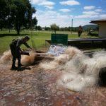 Gendarmería incautó elementos de pesca de uso prohibido y alpiste a granel
