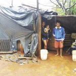 Una pareja con tres hijos sobrevive en un viejo gallinero