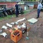 La Policía desmanteló organización de riña de gallos y hay casi una veintena de involucrados por maltrato animal