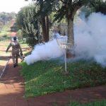 Fumigación y bloqueos sanitarios