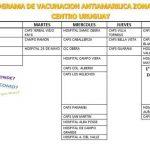 Cronograma de vacunación contra la fiebre amarilla en los hospitales y en los caps