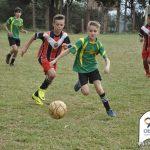 Actualidad del fútbol infantil
