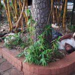 Aumentaron las personas en situación de calle en Oberá
