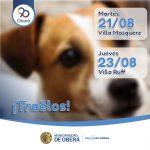 Campaña de vacunación antirrábica a mascotas