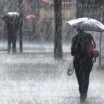 Martes con lluvias en Misiones