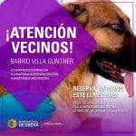 Castración de mascotas en barrio Villa Günther
