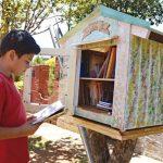 Libros para todos en minibibliotecas