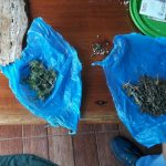 Incautan marihuana y detienen a un presunto dealer en Oberá