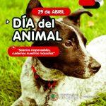 En el día del animal, recordamos los servicios que ofrece el Canil Municipal