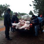 La policía decomisó 500 kilos de carne de cerdo que eran transportado sin el aval pertinente