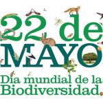 Escuelas obereñas en jornada lúdica por la Biodiversidad