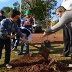 """Celebrarán con talleres el """"Día mundial del Árbol"""""""
