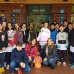 Estudiantes sembrarán plantas nativas en escuelas de Oberá