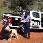 La Policía recuperó un perro
