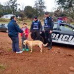 La Policía recuperó un perro que fue sustraído
