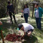 Estudiantes de la Unam plantaron árboles en el camping Berrondo