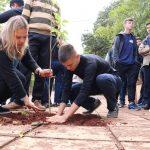 Con estudiantes de la Normal inició el plan de Arbolado Urbano