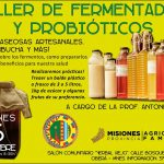 Taller de Fermentados y Probióticos