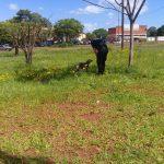 Policías rescataron a un perro con signos de maltrato