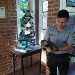 Policías rescataron a un animal de la fauna actoctona