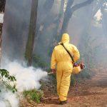 Intensifican tareas de control del Dengue