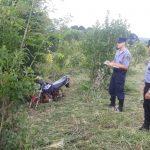 La Policía halló oculta en un yerbal una moto robada