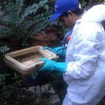 Continúan las tareas de prevención del dengue en la ciudad de Oberá