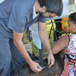 Atención del Centro de Salud Animal