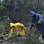 El Gobierno de Oberá asiste a damnificados por la tormenta