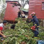 Bomberos de la Policía quitaron un árbol que cayó sobre una casa en  Oberá