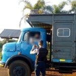 Operativos: actas por infracción a la ley Nacional de Tránsito y licencias retenidas.