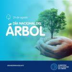 Actividades por Día Nacional del Árbol