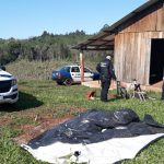 Cinco detenidos por el robo de ganado en Campo Viera