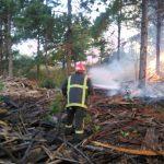 Bomberos sofocaron dos incendios en Panambí y Campo Viera