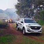 Policías y Bomberos Voluntarios sofocaron un Incendio de malezas