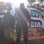 Detuvieron a un joven por intentar robar cables del alumbrado público