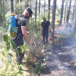 Dos principios de incendio fueron sofocados en Panambí