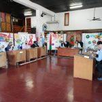 Aprobaron el Plan Director de Lucha contra el Vector Aedes Aegypti