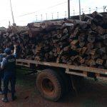 OPERATIVO_RURAL: elementos robados fueron recuperados y un camión con madera nativa secuestrado