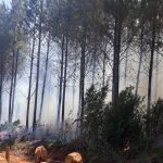 En pocas hora se registraron 2 incendios en Campo Viera y Oberá