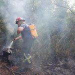 Otros tres incendios fueron sofocados por Bomberos y Policías